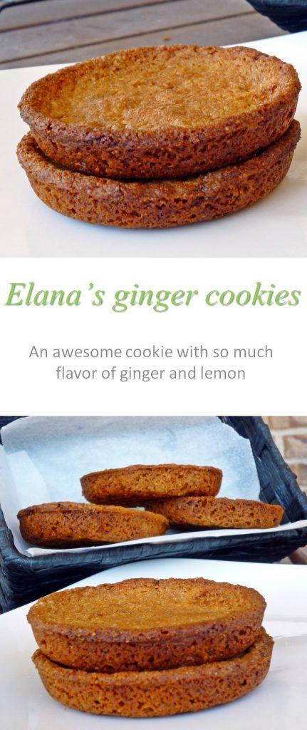 elanas-ginger-cookies