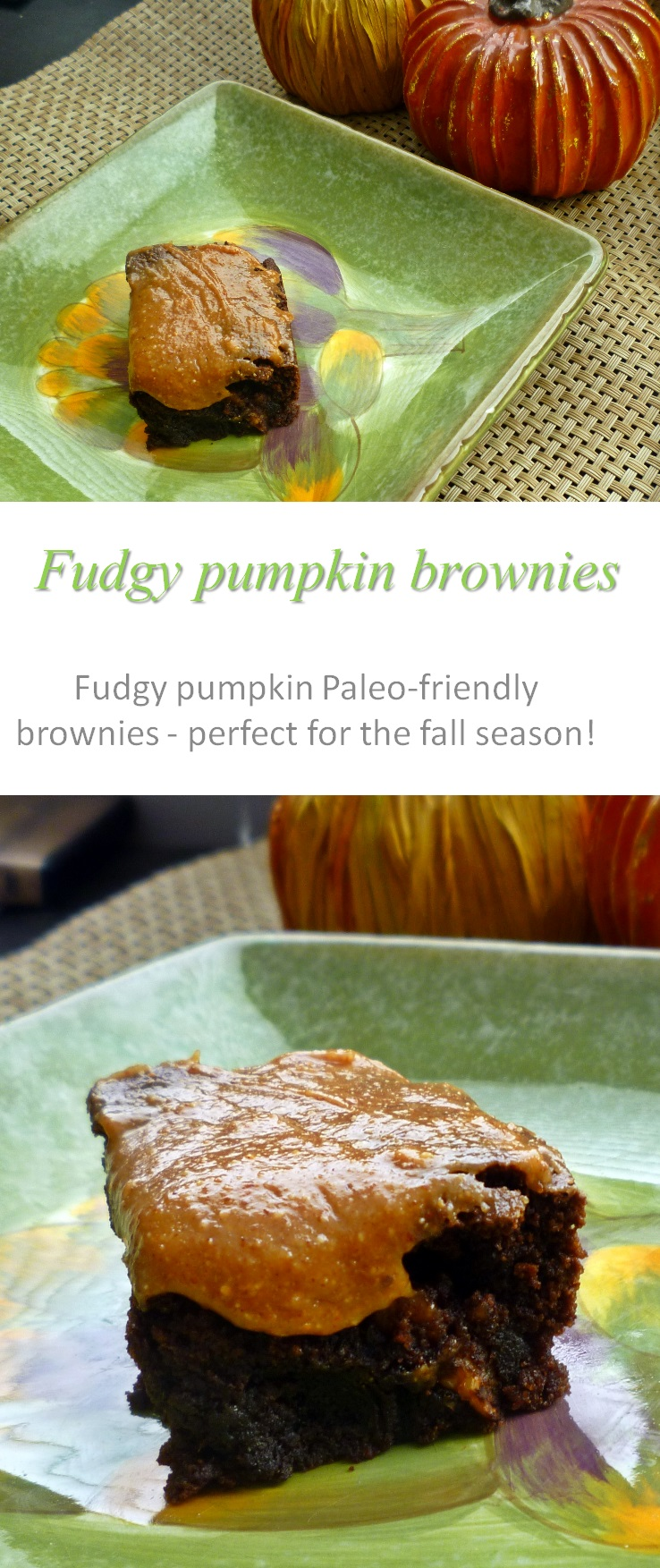 Fudgy, Paleo-friendly pumpkin brownies - enjoy this gooey goodness every season of the year! #brownies