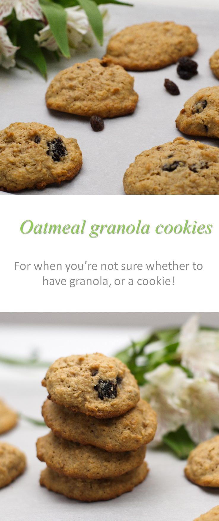 Oatmeal granola cookies - awesome to use up those little bits of granola at the end of the packet! #granola