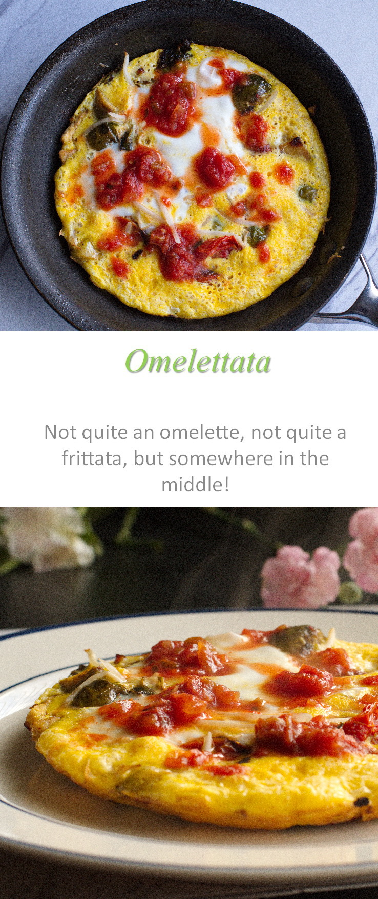 Somewhere between an omelette and a frittata, this omelettata is a tasty middle-ground, chock full of yummy veggies! #omelettata