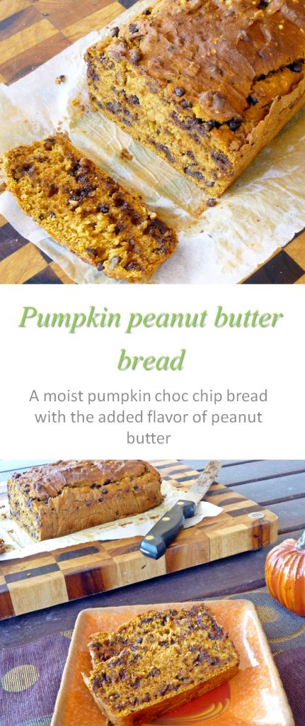 pumpkin-choc-chip-bread