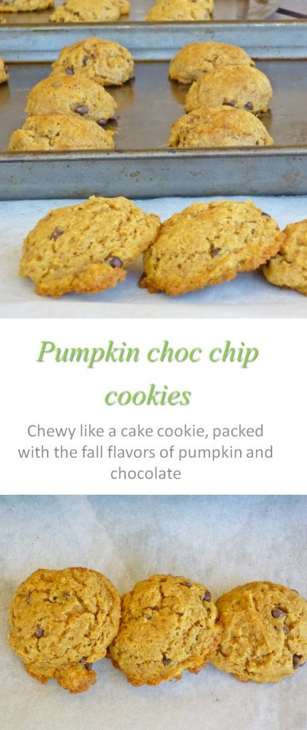 pumpkin-choc-chip-cookies