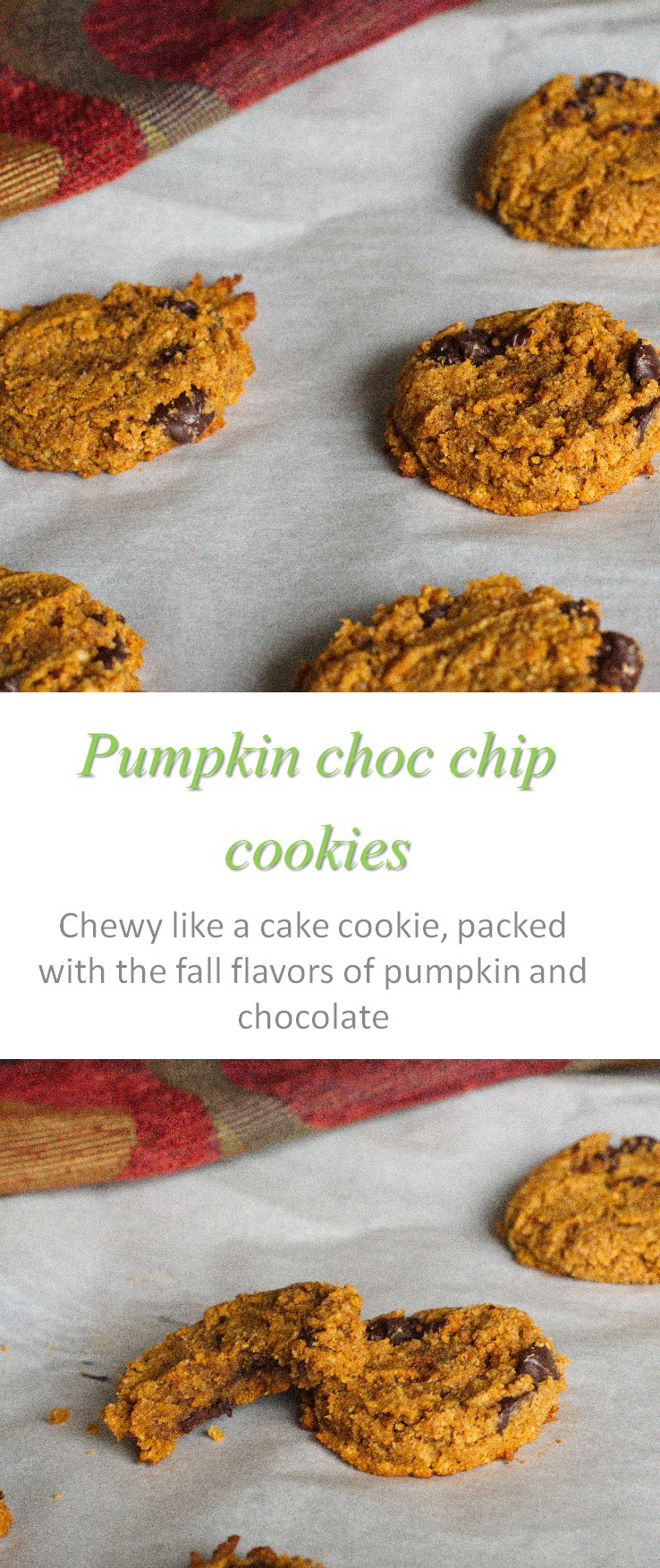 Gluten-free, dairy-free pumpkin chocolate chip cookies that take all the fall flavors of pumpkin and chocolate and combines them into deliciousness in every bite! #pumpkin