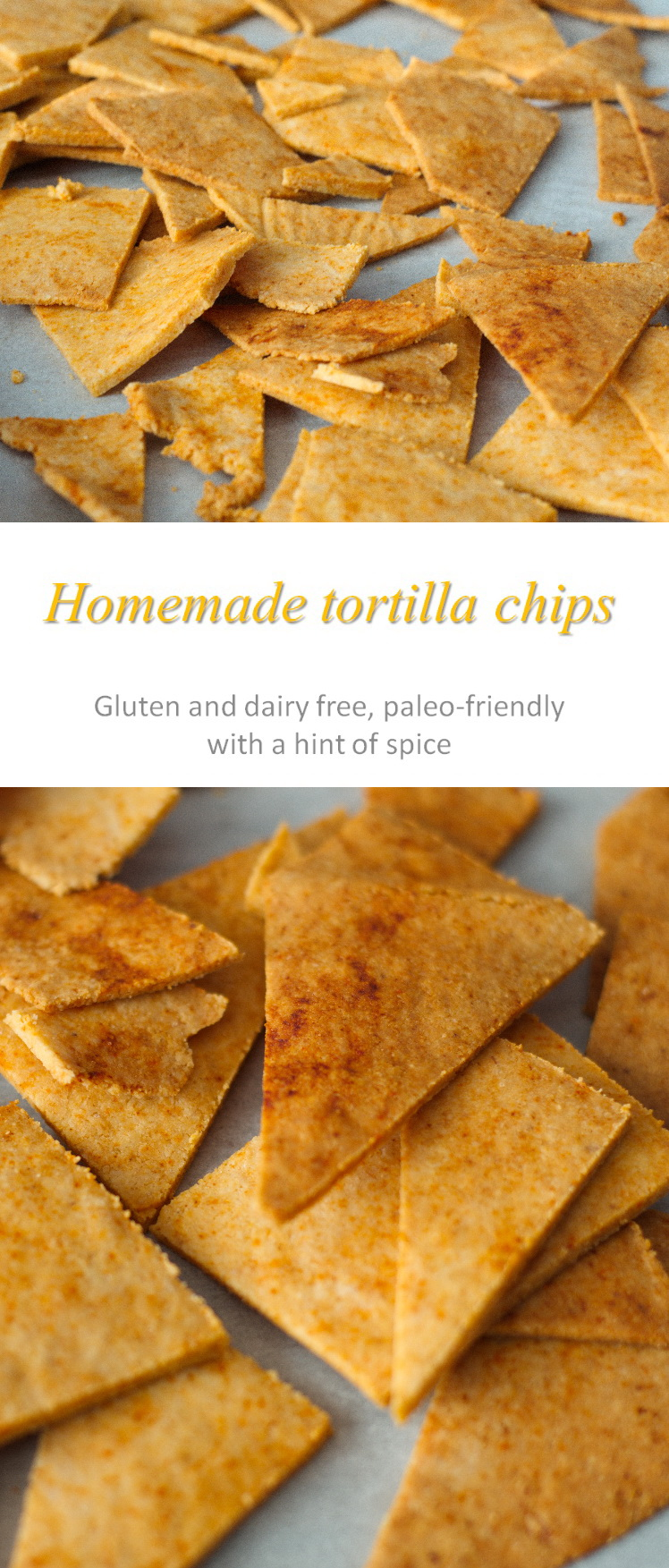 Healthy tortilla chips that are grain-free, gluten-free and Paleo-friendly. Use for dipping in salsa, as chips for nachos or just in soups as you please! #tortillachips