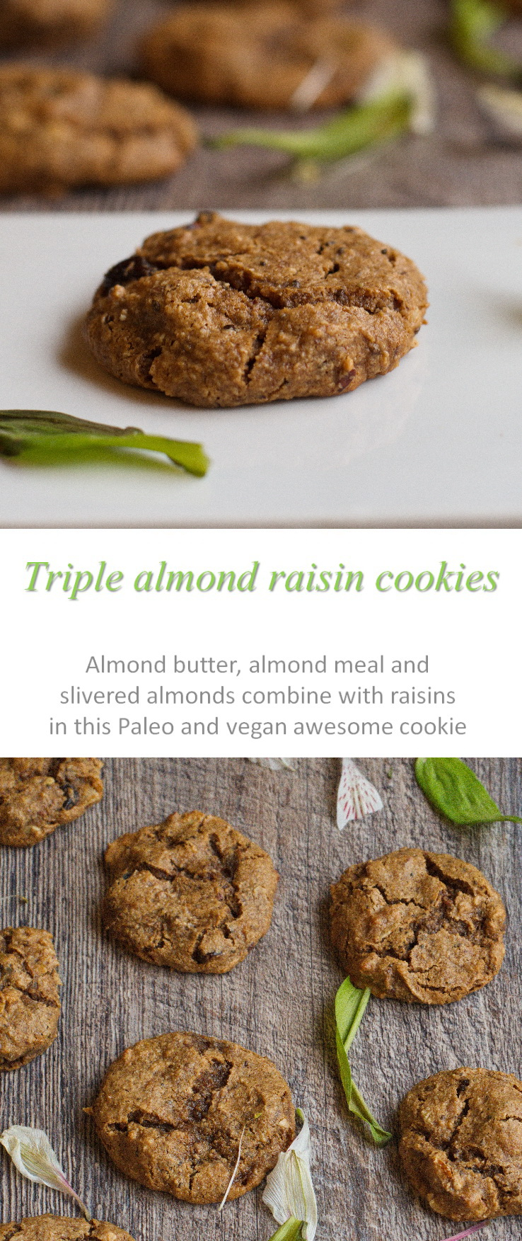 Almond butter, almond meal and slivered almonds combine with raisins to give these Paleo and vegan-friendly triple almond raisin cookies an amazing taste and texture #almond